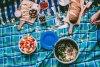 winelands-picnic